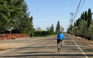 country road bike route lodi